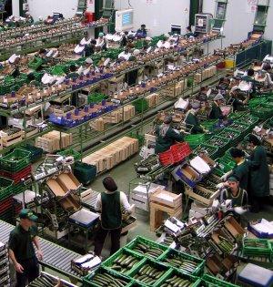 Millonarias pérdidas en la agricultura (El Pepino) Almacc3a9n-de-vegetales