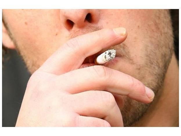 nicotina.jpg_869080375