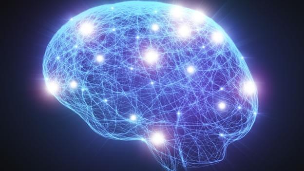 la-actividad-del-cerebro-humano-registra-una-actividad-similar-cuando-un-persona-suea-que-cuando-consume-drogas-psicodlicas