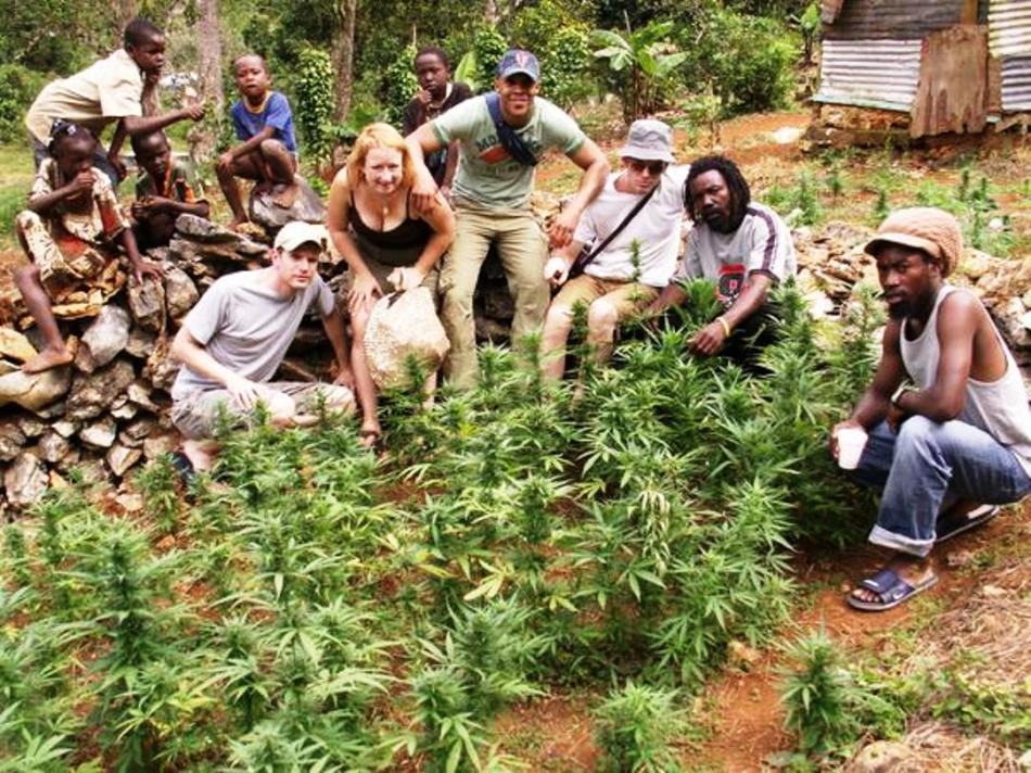 ganja-tours-Jamaica